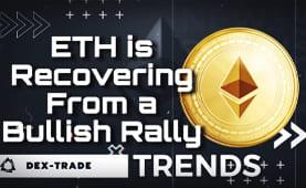 Crypto Market trends September 13 | Dex-Trade